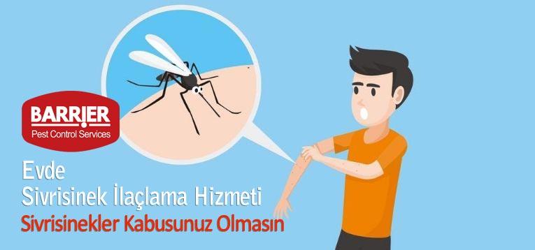 Evde Sivrisinek İlaçlama Hizmeti