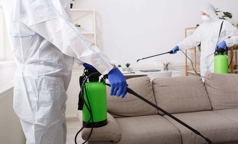 Yazın Fare Sinek Böcek İlaçlama İle Tedbirinizi Aldınız mı